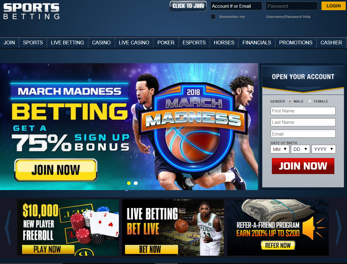 Can i make money with sports betting